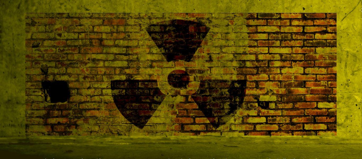 Nükleer Enerjinin Geleceği