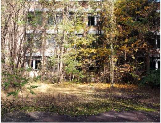 Cernobil (16)